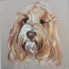Digby - Colour Pastel on Murano Paper