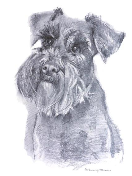 pet_portrait_artist_isleofwight